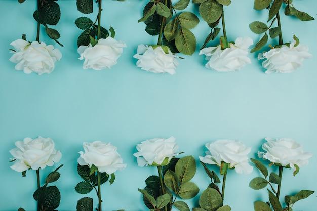 花と春の鮮度カード。緑の葉と白いバラ。長い茎とコピースペースを持つ美しい白いバラ。 Premium写真