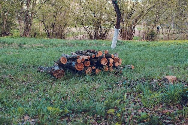 のこぎりの木の丸太は春に緑の芝生の上にあります。 Premium写真