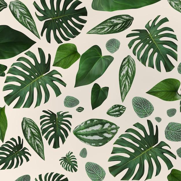 Коллекция зеленые листья шаблон для концепции природы Premium Фотографии