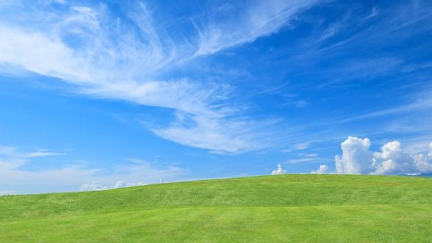 小さな丘と雲と青い空の緑の芝生フィールド Premium写真
