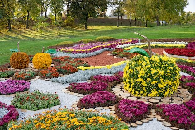 カラフルな菊の花とリンゴの形をした花壇。ウクライナ、キエフの公園。 Premium写真