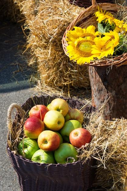 Головки зерна, яблоки и подсолнухи. Premium Фотографии