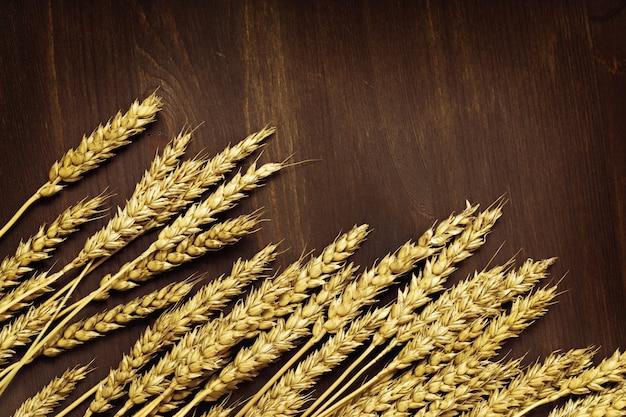Колосья спелой пшеницы Premium Фотографии
