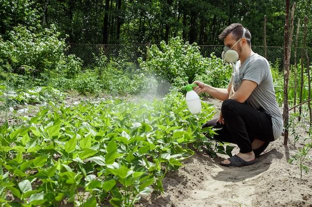 Человек в респираторе опрыскивает растения Premium Фотографии
