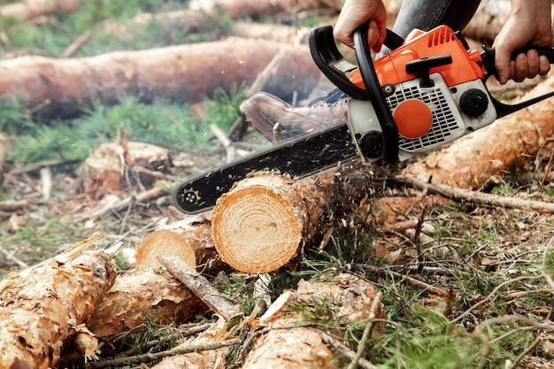 プロのチェーンソーをクローズアップ、伐採 Premium写真