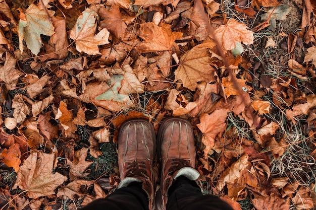 創造的な背景、靴、黄色の葉の背景にオレンジ色の靴。寒い、黄色の葉、秋の気分。コピースペース。 Premium写真
