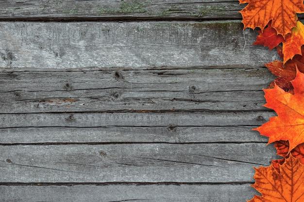 カラフルな秋のカエデと秋の背景は、テキストのための場所で素朴な木製のテーブルに残します。 Premium写真