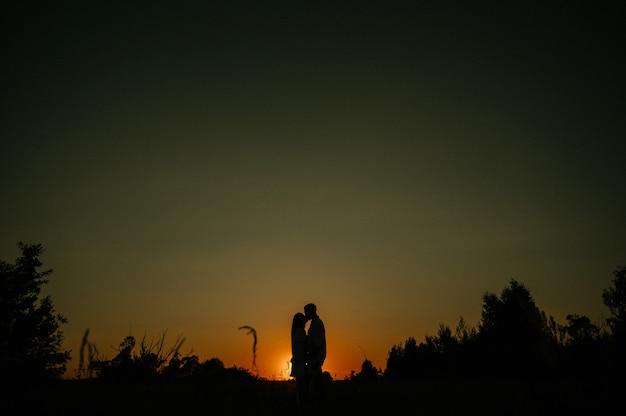 ロマンチックなカップルの愛好家のシルエット、ハグ、キス、感動、夕暮れ時のアイコンタクト Premium写真