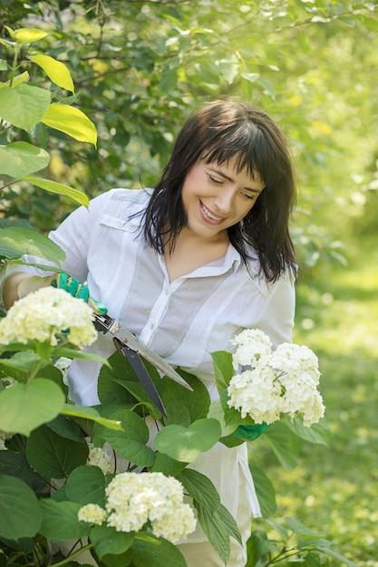 庭に咲く白いあじさいの茂みを笑顔で見守る40歳の美女。手袋をはめた手が花の枝を切り落としました。庭師。夏 Premium写真