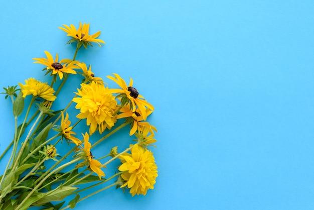 Букет красивых свежесрезанных желтых цветов на синем фоне. красивые желтые летние цветы Premium Фотографии