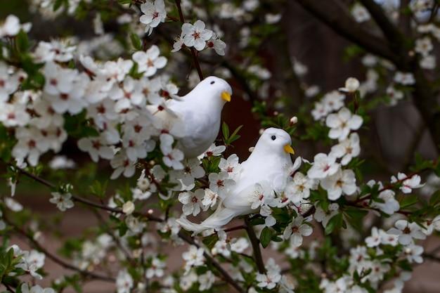 春の庭に桜の木と木の上の2つの白い鳥 Premium写真