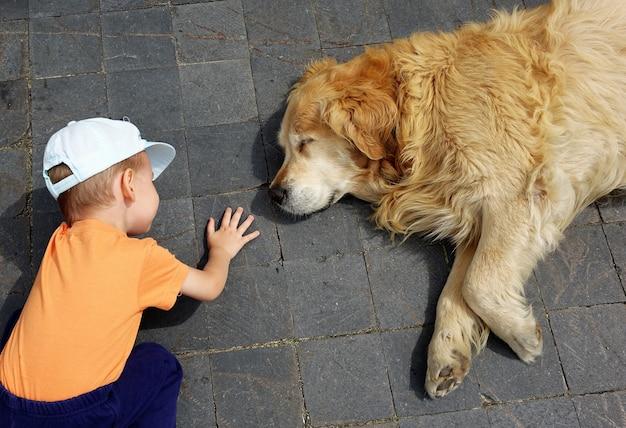 Ребенок, смотрящий на большую собаку, спящую Premium Фотографии