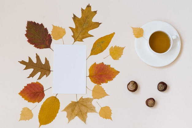 お茶、きれいな白い紙、栗、紅葉 Premium写真