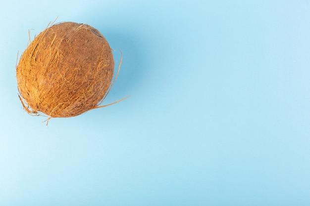 フロントクローズアップビューココナッツ全体の乳白色の新鮮なまろやかなアイスブルーの背景熱帯のエキゾチックなフルーツナッツ 無料写真