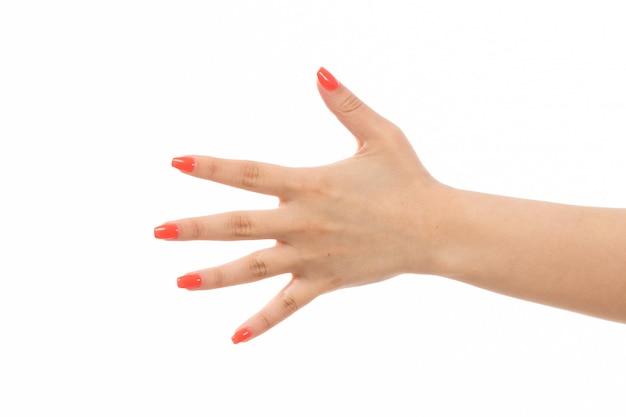 白に彼女の手を示す色の爪を持つ正面女性手 無料写真