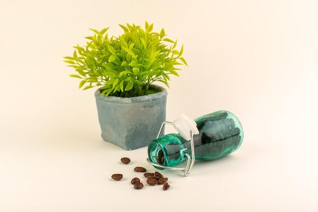 ピンクのテーブルコーヒー色の花の種にコーヒーと緑の植物が付いている正面図瓶 無料写真
