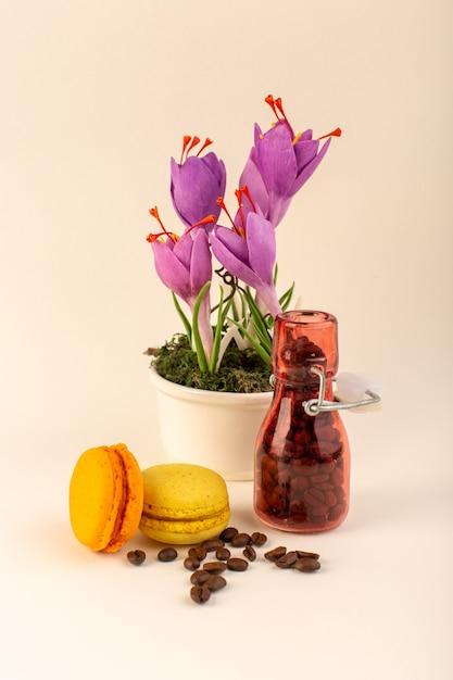 コーヒーフレンチマカロンとピンクの表面に紫の植物の正面図瓶 無料写真