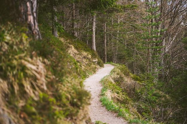 春のバイエルンアルプスのハイキングコース 無料写真