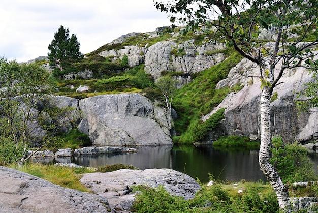 Озеро с отражением деревьев в окружении скальных образований в прекестулене, норвегия. Бесплатные Фотографии