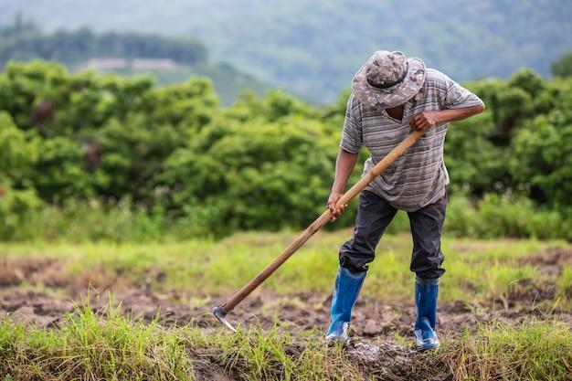 シャベルを使って田んぼの土を掘っている男性農家。 無料写真