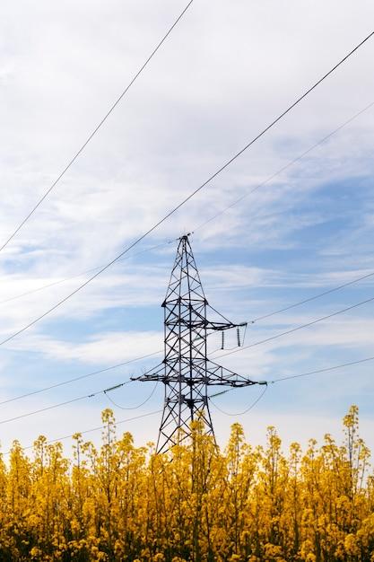 Металлическая колонна с металлическими проволоками, построенная на поле с цветущим желтым рапсом. Premium Фотографии