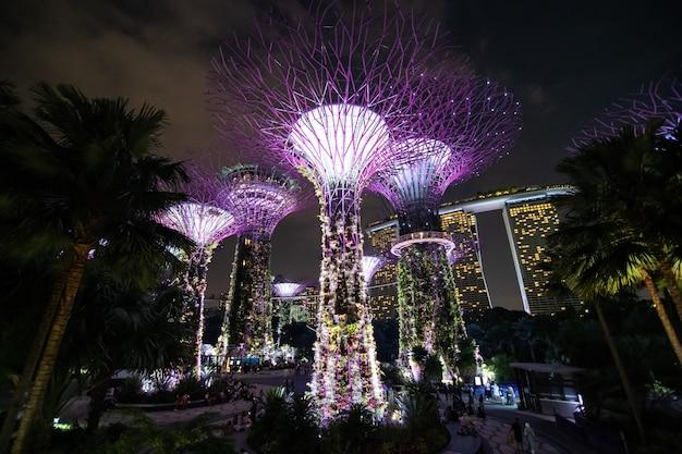 Ночной вид на рощу супердеревьев, цветочный купол в лесном облаке в садах у залива Бесплатные Фотографии