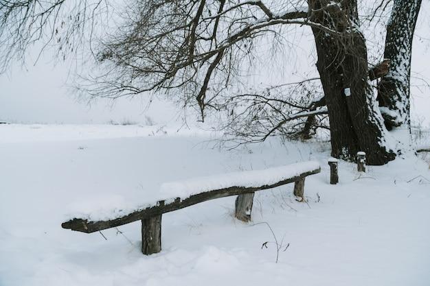 Скамейка в парке, заваленная свежим снегом Premium Фотографии