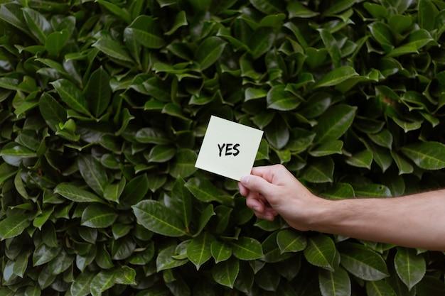 Человек, держащий белую карточку с печатью «да» с зелеными лаврами Бесплатные Фотографии