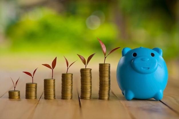 Acs inc payday loan image 10