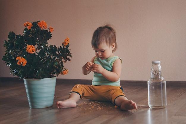 小さな子供が鍋に大きな花の隣の床に座って、水でバトルします。女の子は植物をはぎ取る Premium写真