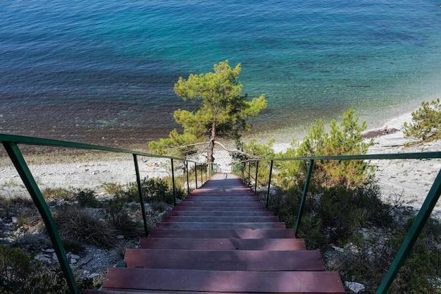 岩の上の海への階段は森の中の野生のビーチロードに通じています Premium写真
