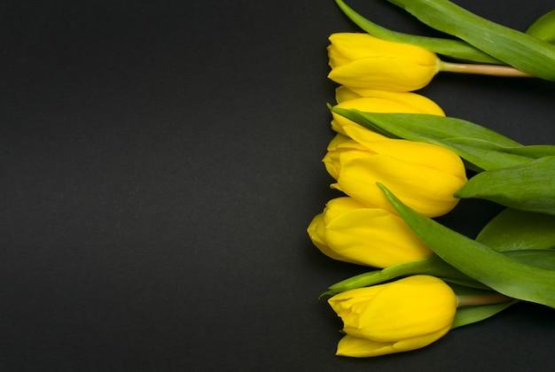 검정색 배경에 튤립 꽃입니다. 애도의 카드. 프리미엄 사진