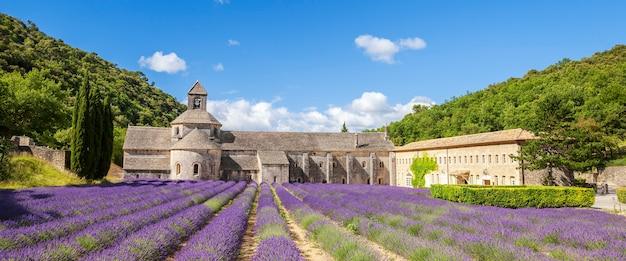 Аббатство сенанк и цветущие ряды цветов лаванды. панорамный вид. Бесплатные Фотографии