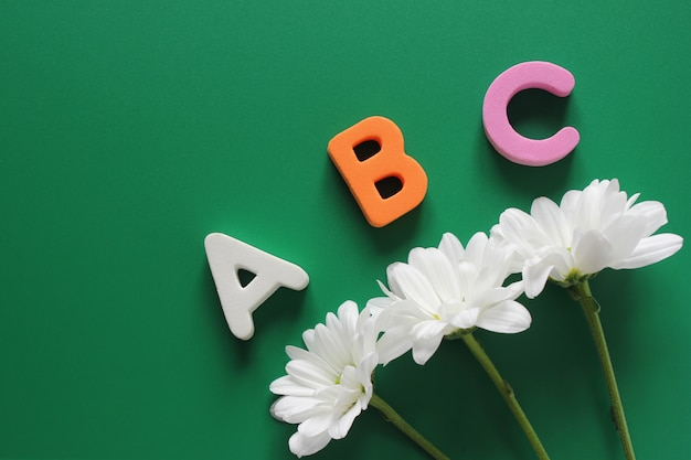 Abc - the first letters of the english alphabet and three white chrysanthemums Premium Photo