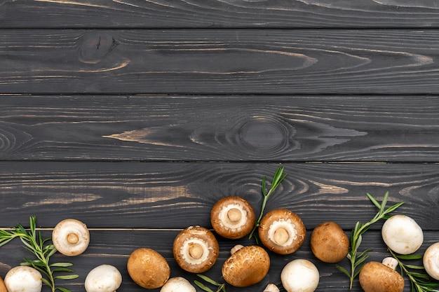 Выше вид грибной рамы Бесплатные Фотографии