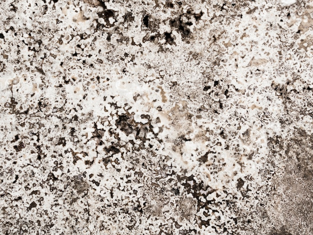 Abstract background of marble textured Free Photo