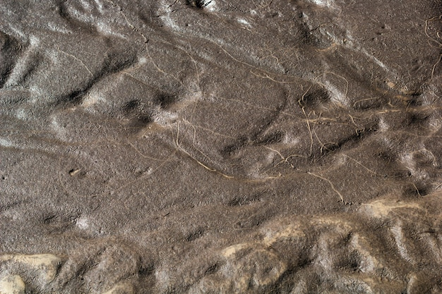 Abstract background texture of wet sand and clay Premium Photo