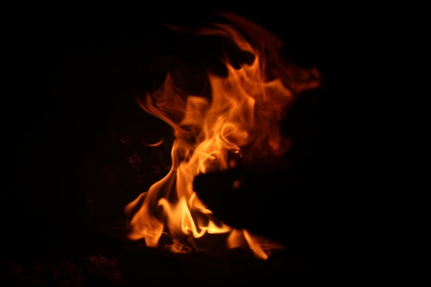 Abstract campfire background Premium Photo