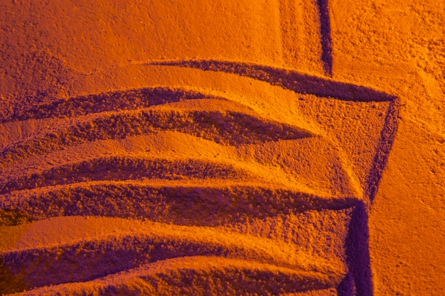 Abstract claws on sunset sand Free Photo