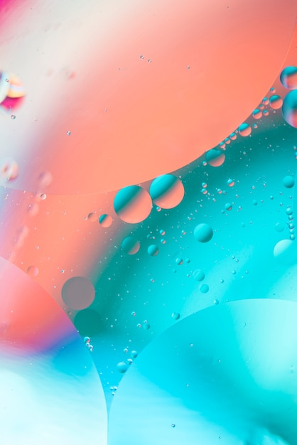 Abstract colorful oil drops in liquid on hued defocused background Free Photo