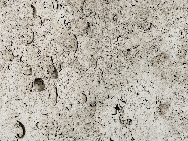 Abstract floor textured background Free Photo