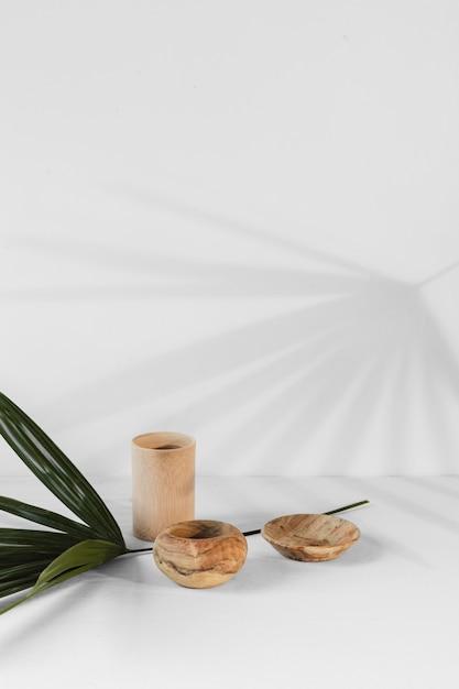 最小限の植物と影を抽象化 無料写真