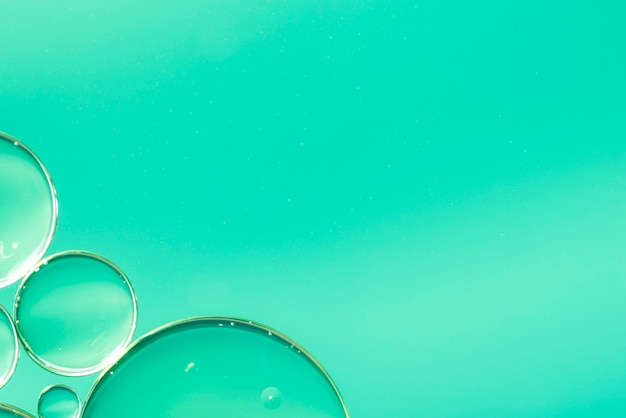Abstract oil drops in water on green background Free Photo