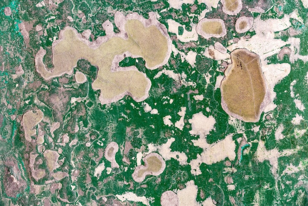 Abstract old and abandoned crack epoxy green floor texture. perfect for background. Premium Photo