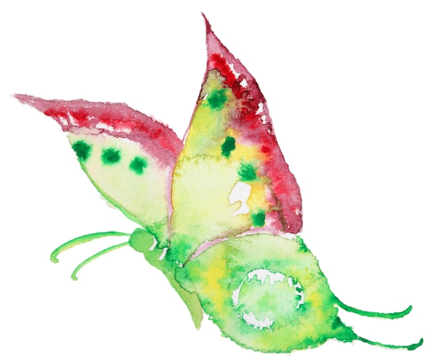 Abstract watercolor hand drawn butterfly Premium Photo