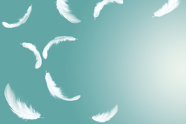 Abstract white feathers floating in the air Premium Photo