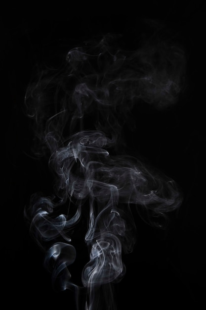Abstract white smoke swirls on black background Free Photo