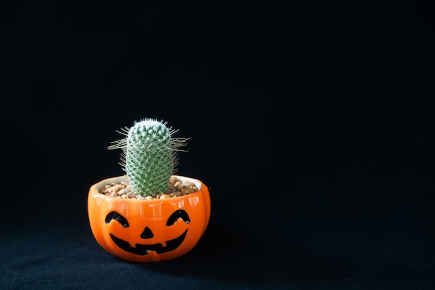 Accessory of decorations happy halloween day background concept with cactus plant Premium Photo