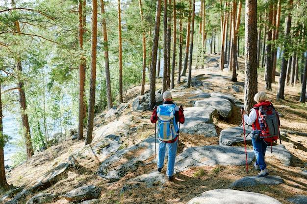 Active leisure Free Photo