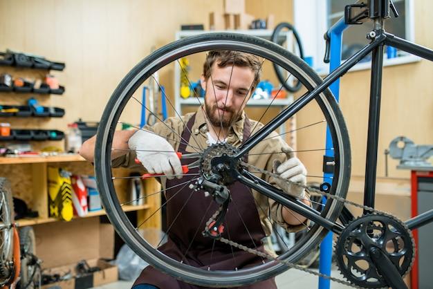 Adjusting bicycle chain Free Photo